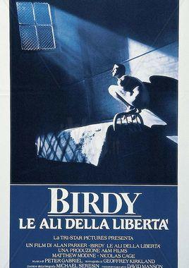"Cartel ""Birdy"" italiano"