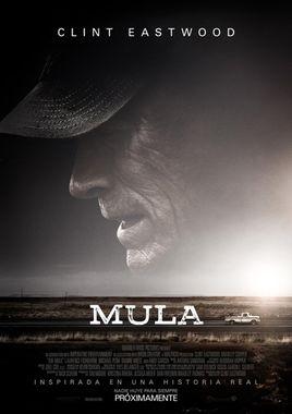 Cartel oficial en español de: Mula