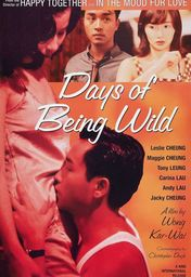 Cartel oficial en español de: Days of Being Wild (Días Salvajes)