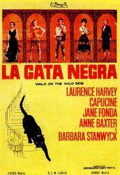 Cartel oficial en español de: La gata negra