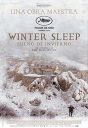 Cartel oficial en español de: Sueño de invierno
