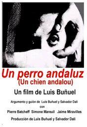 Cartel oficial en español de: Un perro andaluz