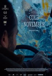 Cartel oficial en español de: Cold November