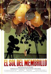 Cartel oficial en español de: El sol del membrillo