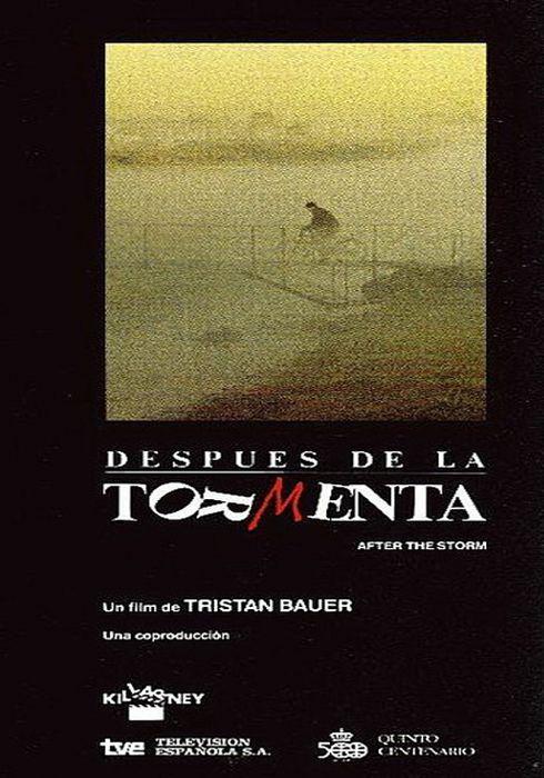 Cartel oficial en español de: Después de la tormenta