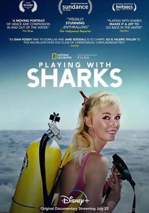 Cartel oficial en español de: Jugando con tiburones