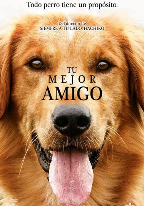 Cartel oficial en español de: Tu mejor amigo