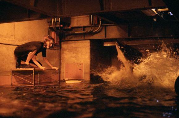 "Imagen de ""Deep Blue Sea"" 16"