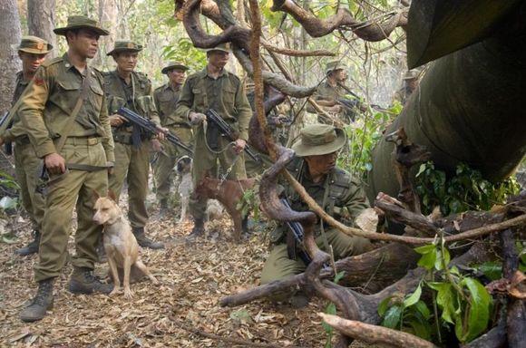 """Imagen de """"John Rambo"""" 9"""